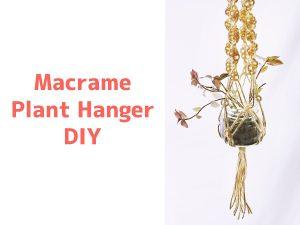 macrame plant hanger DIY